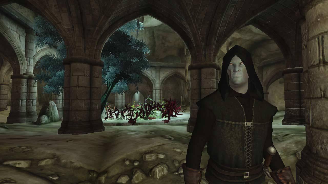 Так и TES VI дождаться можно: игрок отсидел в тюрьме TES IV: Oblivion 616 лет