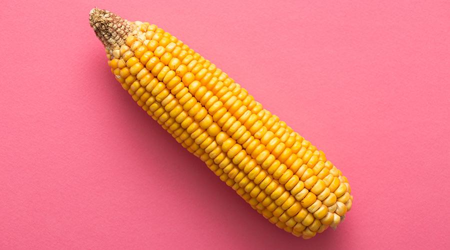 Врач рассказала, при каких болезнях опасно употреблять кукурузу