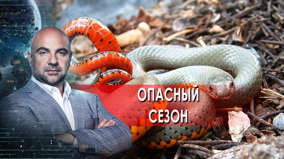 Опасный сезон. 'Как устроен мир' с Тимофеем Баженовым. (10.06.2021)
