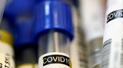 Минздрав Австрии сообщил о тревожной ситуации с ростом числа COVID-19