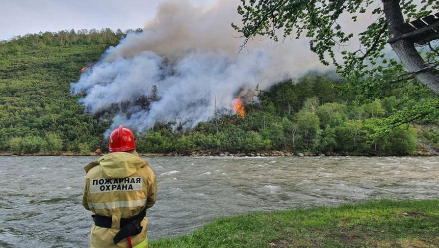 В России за сутки потушили 43 природных пожара