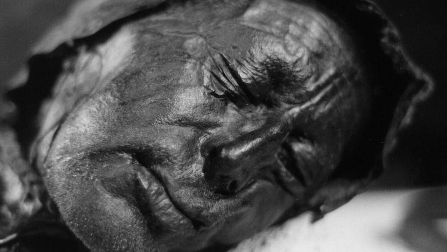 Ученые выяснили, что ел перед смертью человек, умерший в датских болотах 2,5 тыс. лет назад
