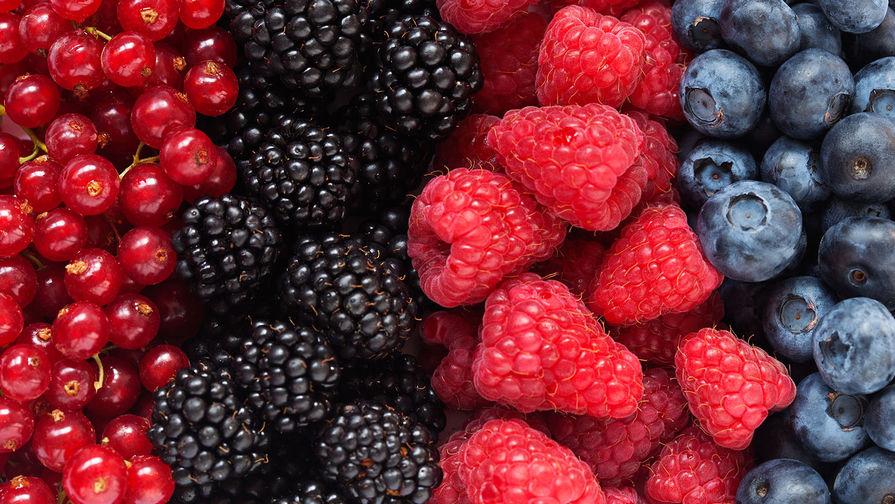 Гастроэнтеролог рассказал, сколько можно хранить ягоды в холодильнике