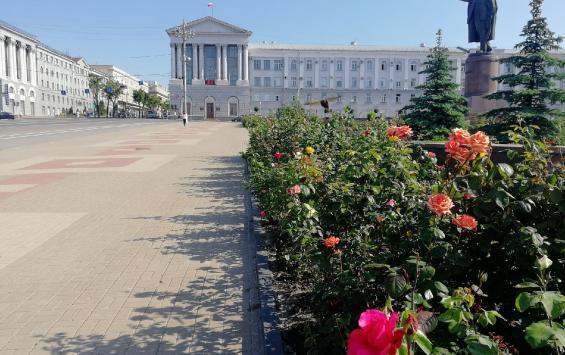 Очередной курьёз допустили депутаты Курского городского Собрания