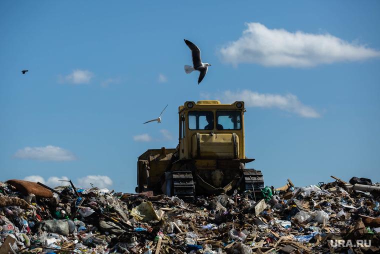 В 32 регионах России заканчиваются места для захоронения мусора