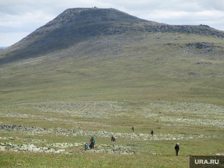 Коронавирус и пожары сорвали экспедицию на перевал Дятлова