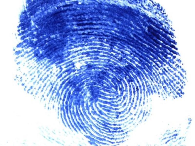 В течение 3 лет МВД создаст систему, определяющую людей по лицу и отпечаткам пальцев